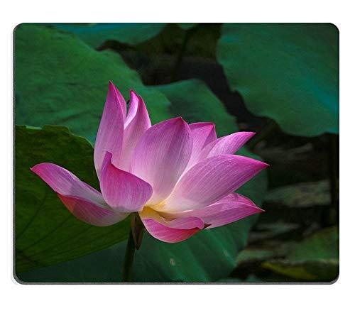 マウスパッドの賭博マウスパッドピンク神聖な蓮はそれ自身の緑の葉の背景PN00X22