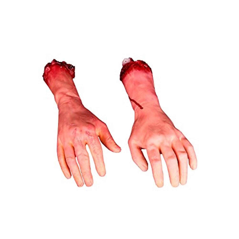 [パーティクラブ]partyclub Fake Rubber Bloody Arm Body Parts Pack of a Pair RQ-1506291 [並行輸入品]