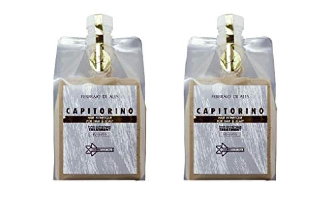承知しました銀実験的【2個セット】カピトリーノ トリートメント 1000g レフィル