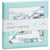 Aden + Anais (エイデンアンドアネイ) 【日本正規品】モスリンコットン ・ミニドリーム・ブランケット ディズニー くまのプーさん mini dream blankets-DISN602J