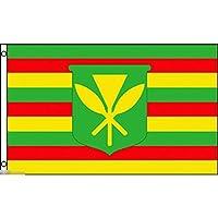 国旗 ハワイ 先住民 ネイティブ ハワイアン 特大フラッグ【ノーブランド品】