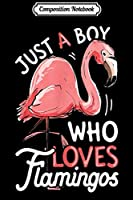 Composition Notebook: Just A Boy Who Loves Flamingos Pink Flamingo Lovers  Journal/Notebook Blank Lined Ruled 6x9 100 Pages