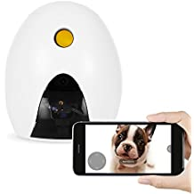 FunPaw Q Cat & Dog Treat Dispenser w/ Toy Laser: Monitor from Anywhere w/ the App, 720p Hi-Res Pet Camera & 2-Way Audio
