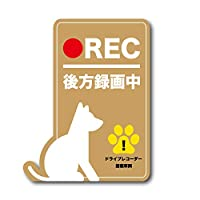 犬 後方録画中 シール ステッカー ブラウン 茶 ドラレコ ドライブレコーダー イヌ ペット