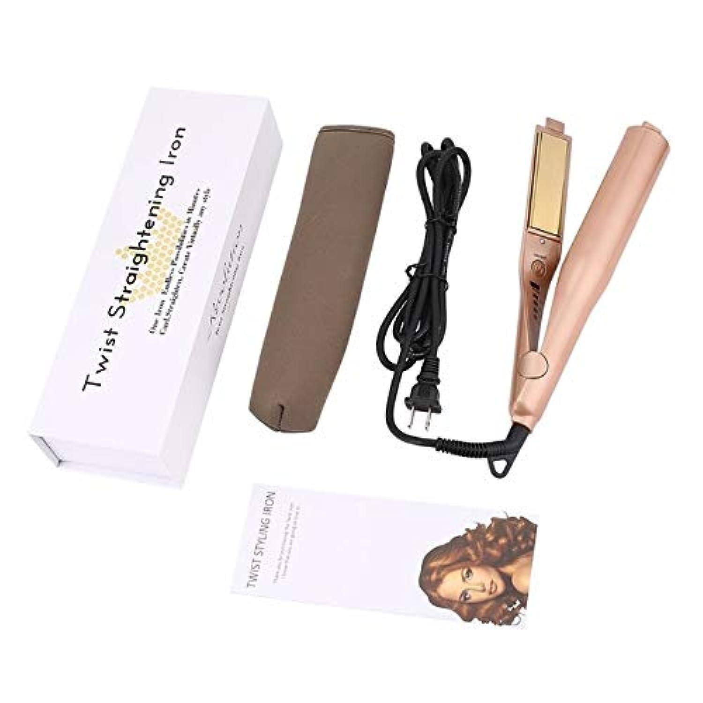 中世の条件付き飛ぶWTYD 美容ヘアツール 2ヘアアイロンヘアアイロンストレートヘアアイロン、プラグ標準:US