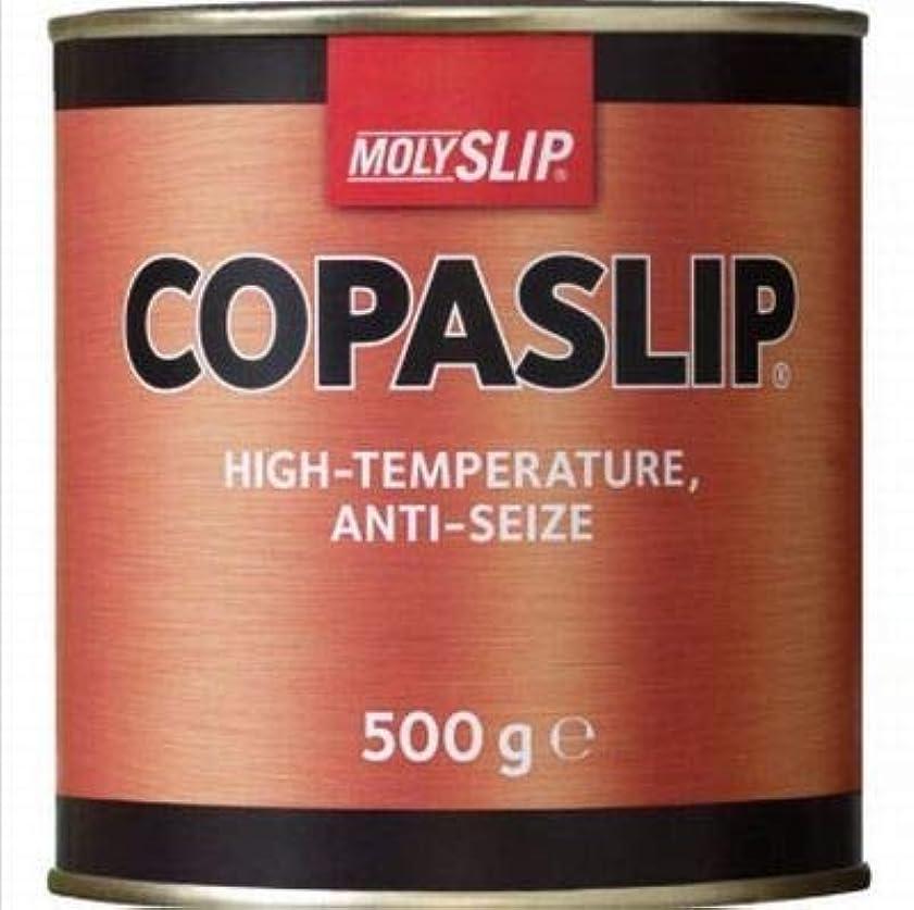 極小伴うエンティティCOPASLIP コパスリップ 500g缶 [並行輸入品]