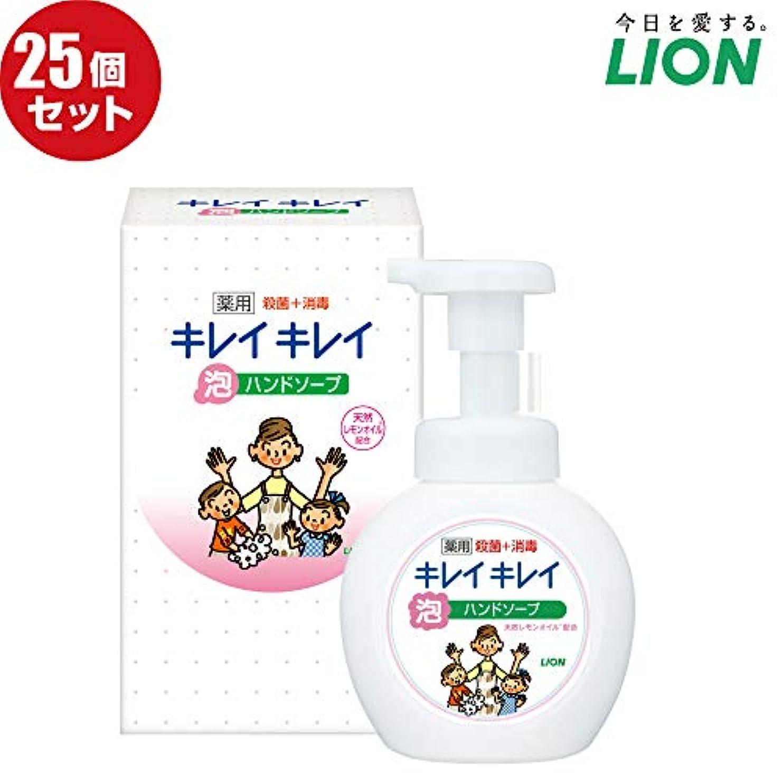 満足付ける器具【25個セット】LION キレイキレイ薬用泡ハンドソープ250ml ノベルティギフト用化粧箱入