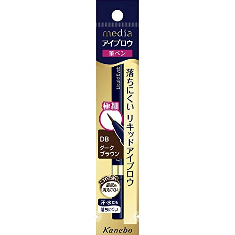 行進フリースヘルメット【カネボウ】 メディア リキッドアイブロウ AA DB