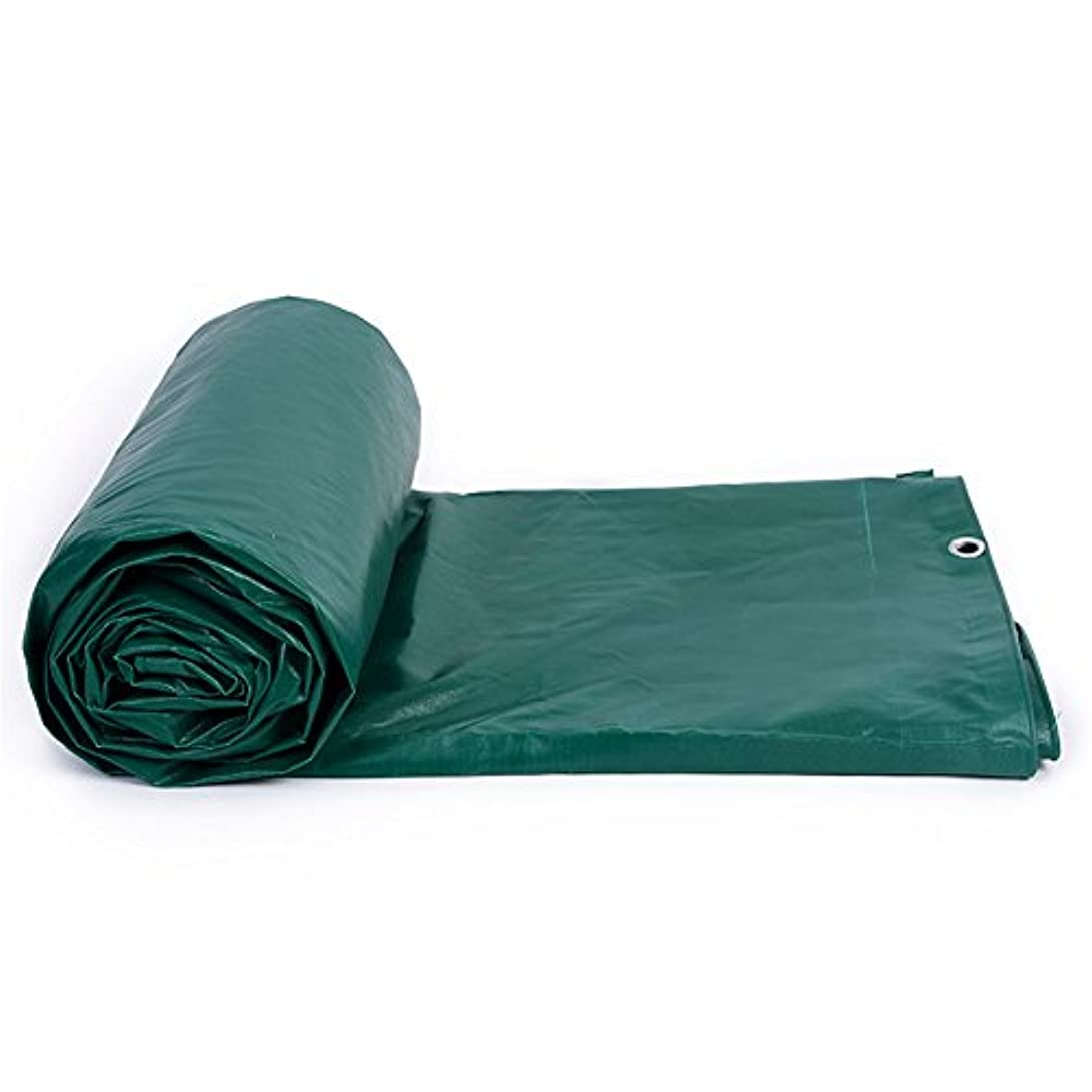 デンマーク語同等の愛されし者HTDZDX 日除けタパールンシェッドクロスサンシェード防水布厚めPVC日焼け止め雨と風防3つの防水シート (Color : Green, Size : 2x2m)