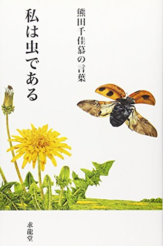 熊田千佳慕の言葉―私は虫である (「生きる言葉」シリーズ)の詳細を見る