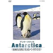 Antarctica ~南極・大自然に生きるペンギンたち~ [DVD]