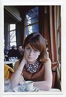 カトリーヌ・ドヌーヴ 写真(小) Portrait Photograph 61
