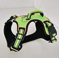Lklmy 牽引ロープ中小犬チェーン犬の鎖ベルト犬の鎖ペットの胸部ストラップ付き犬の胸部ストラップ (Color : グリーン, Size : XS)