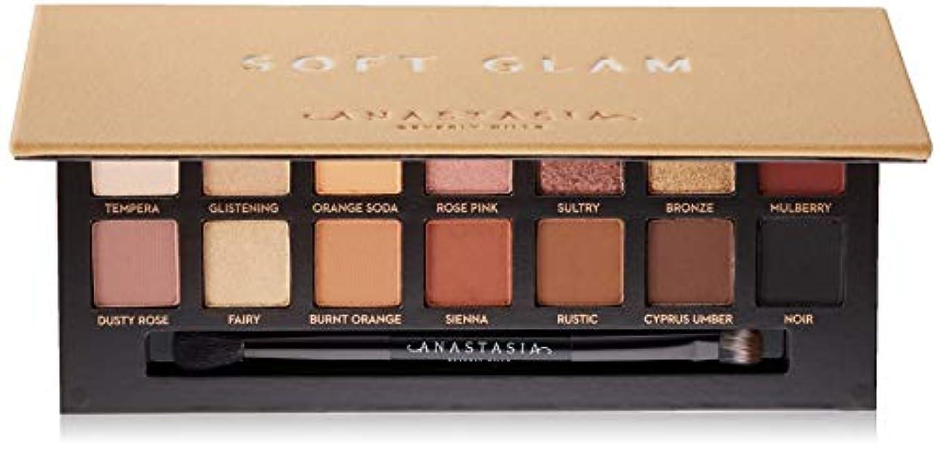率直なわずかなデュアルANASTASIA BEVERLY HILLS Soft Glam Eyeshadow Palette