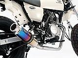 ビームス ビームス(BEAMS) フルエキゾーストマフラー マフラー SS300チタン ダウンタイプ B129-09-000