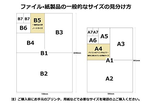 糸井嘉男(阪神タイガース) 2018年 カレンダー 壁掛け B2 CL-498