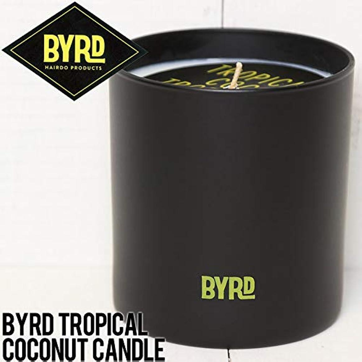 違う採用する生息地BYRD バード TROPICAL COCONUT CANDLE キャンドル BTCC01 [並行輸入品]