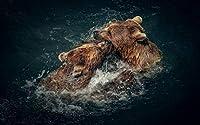 動物絵アートキャンバスプリントポスター、家の壁の装飾(2つの茶色のクマは遊び心のある水)60x40cm