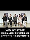 NOW ON STAGE 月組宝塚大劇場・東京宝塚劇場公演『エリザベート-愛と死の輪舞-』