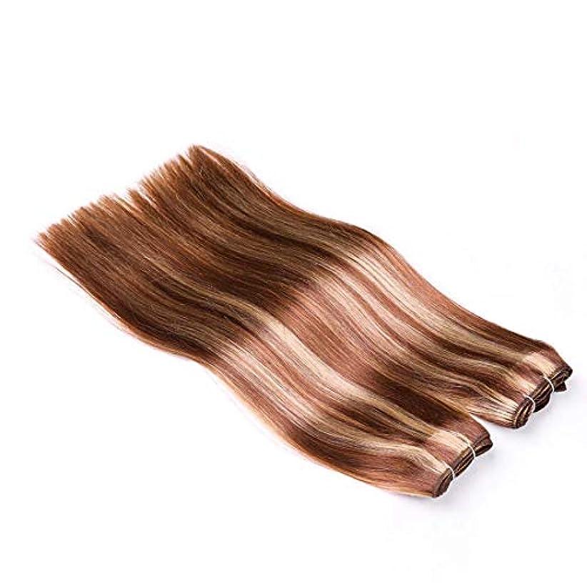 パキスタン音楽後ろにJIANFU 髪カーテン レアルヘア ストレートヘア ミックスカラー ウィッグカーテン レディース ノットなし 染める可能 (サイズ : 14inch)