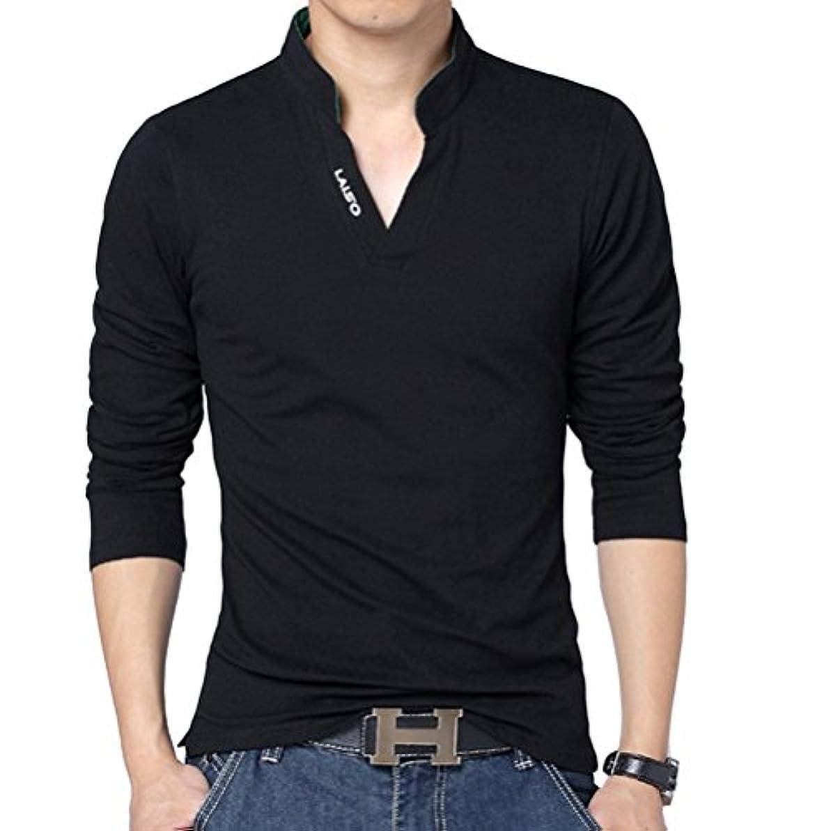プレビスサイトスナッチ敷居輝姫 ブラウス メンズ 長袖 ファッション カジュアル 無地 シャツ タイト トップス  vネック トップス (XL, ブラック)