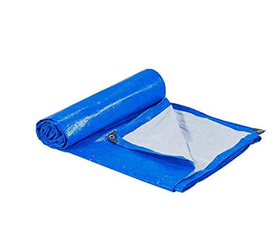 付添人フラッシュのように素早くメッシュ家庭用防水シート 屋外ピクニックキャンプ用防水ポンチョ、光と防雨日焼け止め織物 商品を覆うバルコニー (Size : 3*6m)