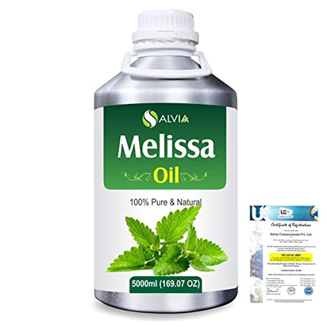 窓を洗う精巧な賛辞Melissa (Melissa officinalis) 100% Natural Pure Essential Oil 5000ml/169fl.oz.