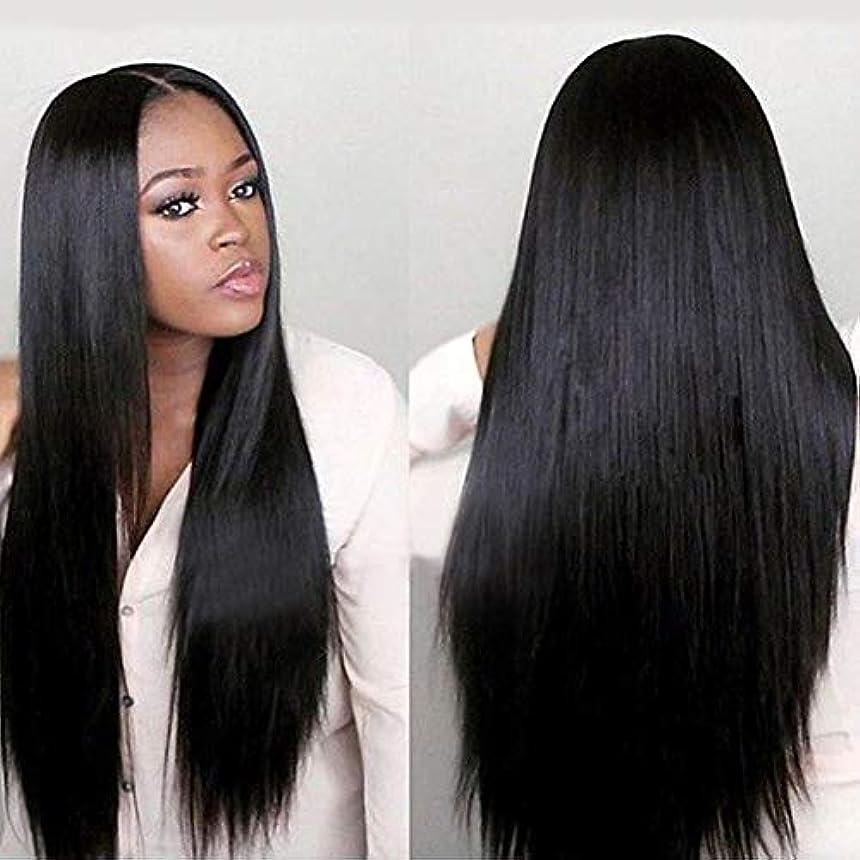 世辞終わった反乱slQinjiansav女性ウィッグ修理ツール女性黒ロングストレートレースフロントローズネット人間の髪の毛ウィッグナチュラルヘアピース