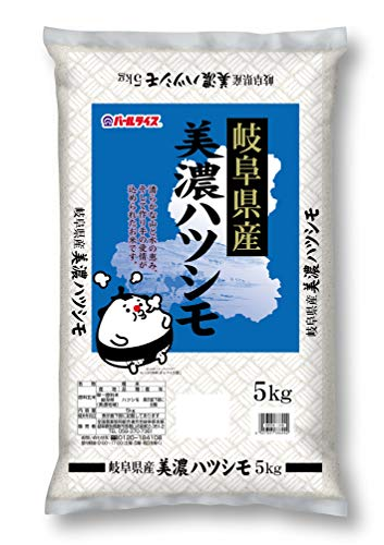 【精米】 岐阜県産 白米 美濃ハツシモ 5kg 令和元年産