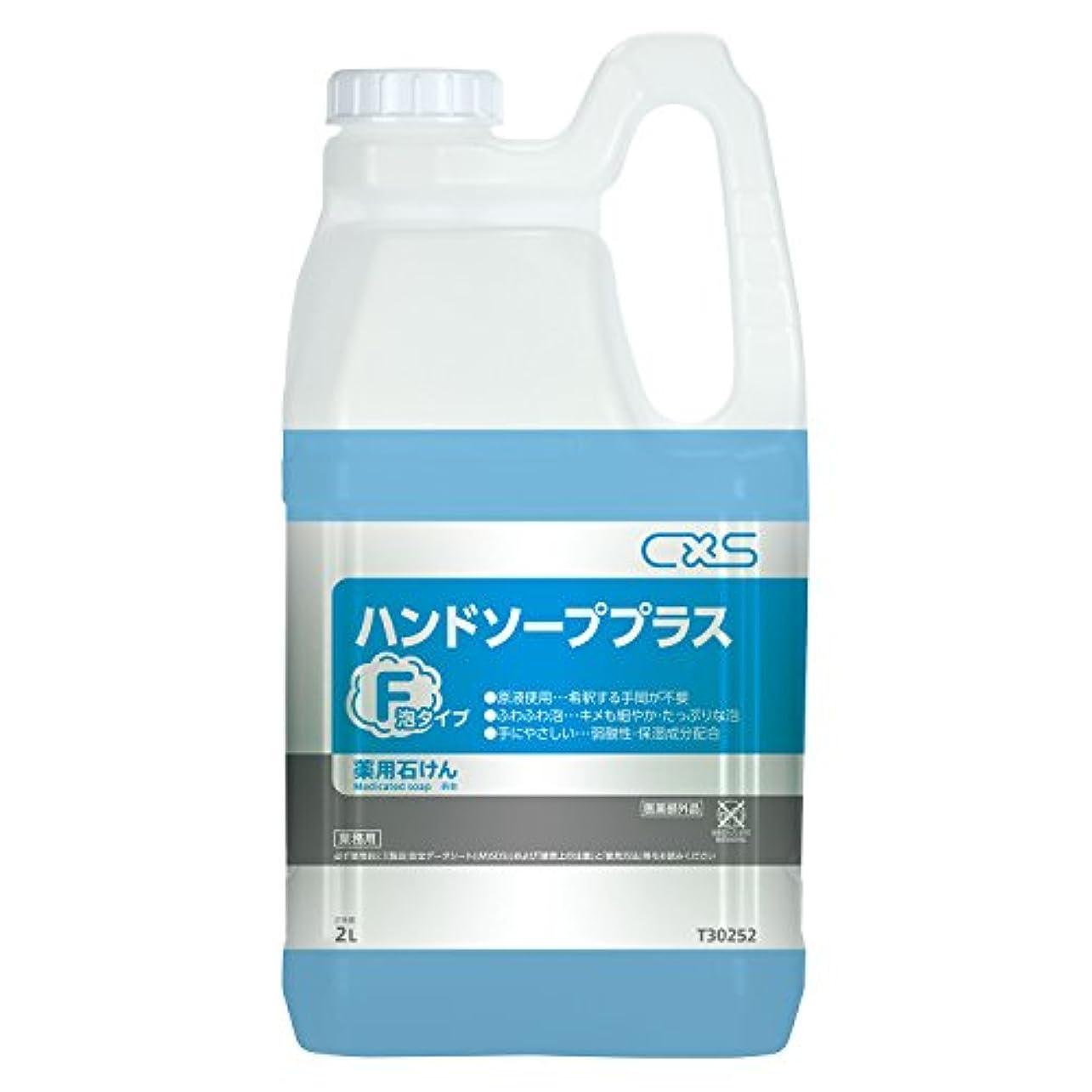 ジャンクローン化合物シーバイエス ハンドソープ プラスF 2L T30252-4346 【4812271】