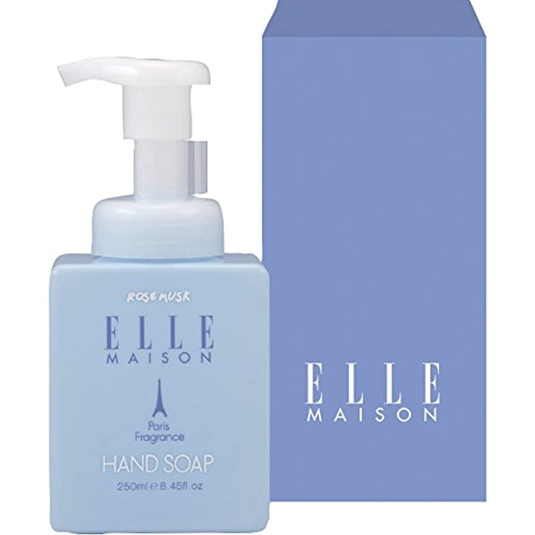 アジテーションまろやかな中絶ELLE MAISON 泡で出る薬用ハンドソープ 【こども 手洗い てあらい ボトル ポンプ 泡ででる あわ ワンプッシュ インフルエンザ予防 ウイルス除去 化粧箱入り いい匂い 香り付き 460】
