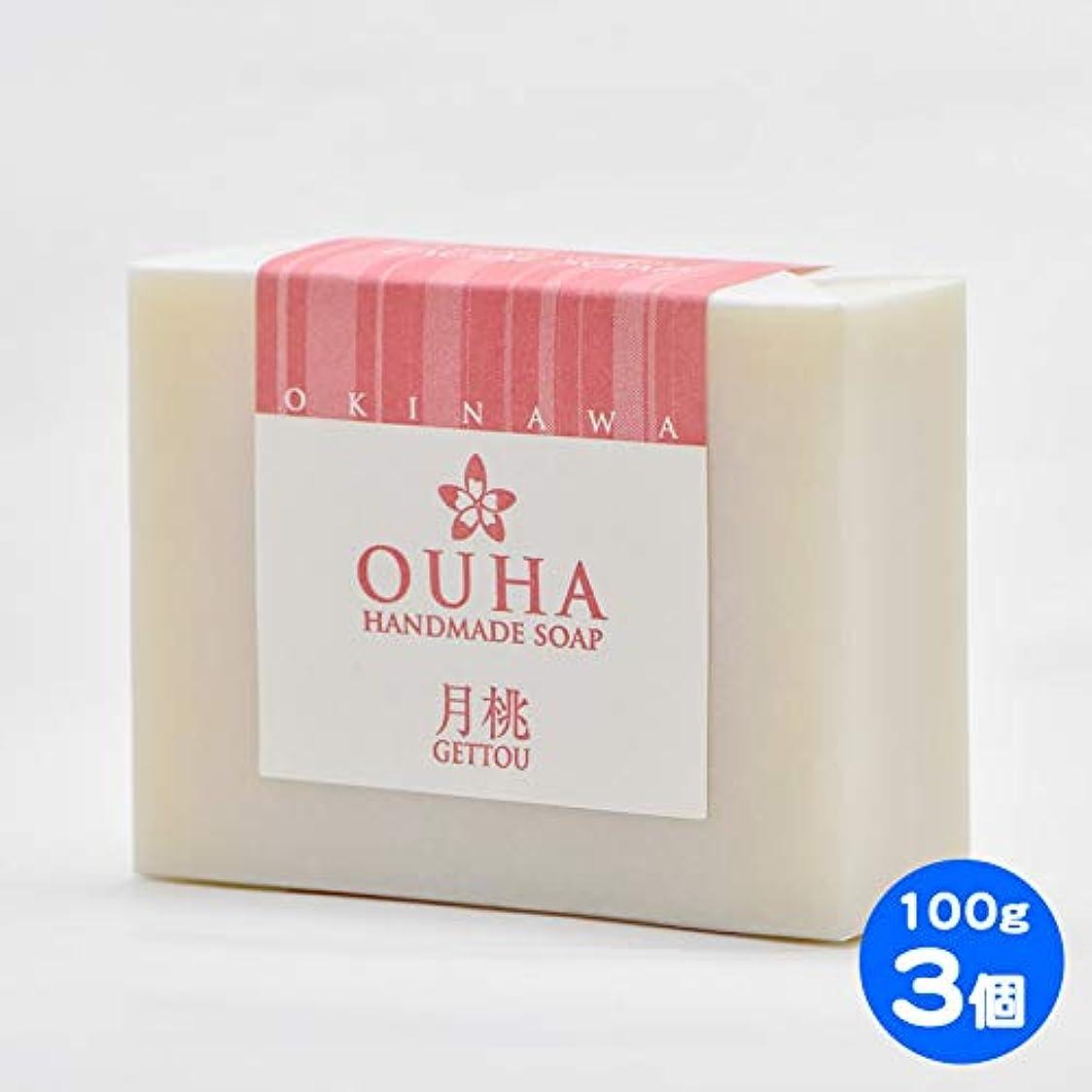 雇用者石の左【送料無料 レターパックライト】沖縄県産 OUHAソープ 月桃 石鹸 100g 3個セット