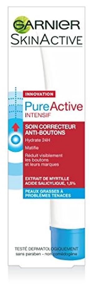 アグネスグレイアブストラクト終わらせるGarnier Skin Active Pure Active Intensive Anti-Korrektur-Behandlung 40ml