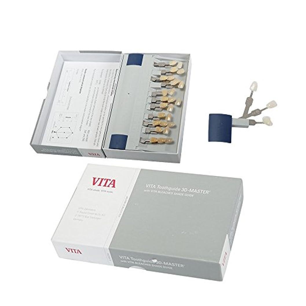 判定志す迷惑VITA3Dシェードガイド 29色 3D 歯列模型ボード Teeth Whitening