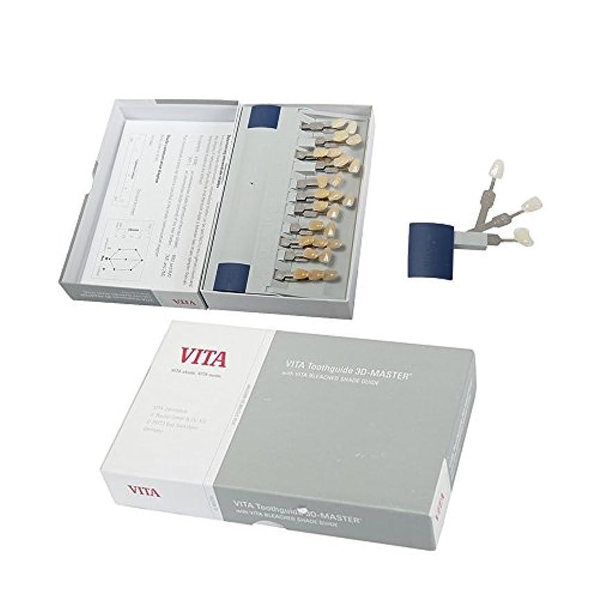 戸口泣いている買い物に行くVITA3Dシェードガイド 29色 3D 歯列模型ボード Teeth Whitening