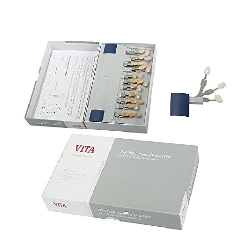 貝殻中央欠乏VITA3Dシェードガイド 29色 3D 歯列模型ボード Teeth Whitening
