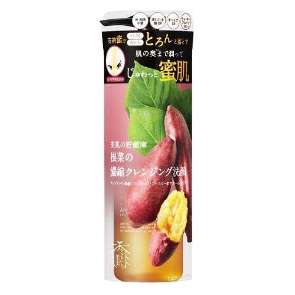 彫刻優雅反動美肌の貯蔵庫 根菜の濃縮クレンジング洗顔 200ml - アイメイカーズ2個セット
