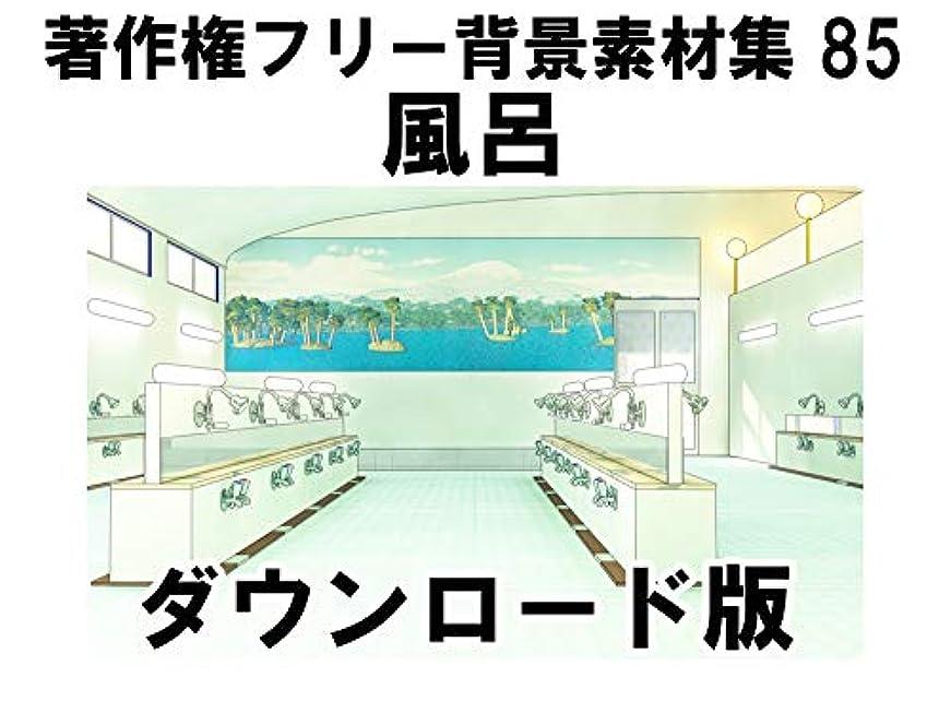 禁止スリーブ仕事に行くウエストサイド 著作権フリー背景素材集85「風呂」|Win対応|ダウンロード版