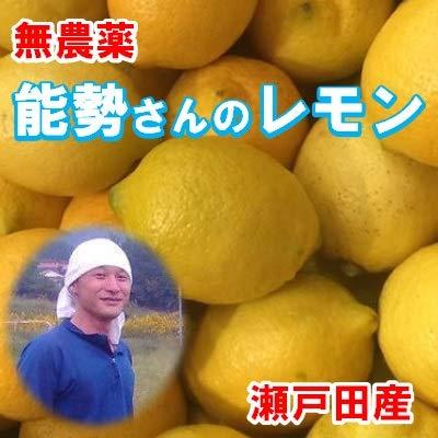 広島レモン 能勢さんの無農薬レモン 10kg A品 防腐剤 防カビ剤不使用 瀬戸田レモン 国産レモン