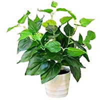 MedianField 【 観葉植物 造花 鉢 】 おしゃれ インテリア 雑貨 人工 フェイク グリーン 緑 植物 鉢植え 葉 (鉢)