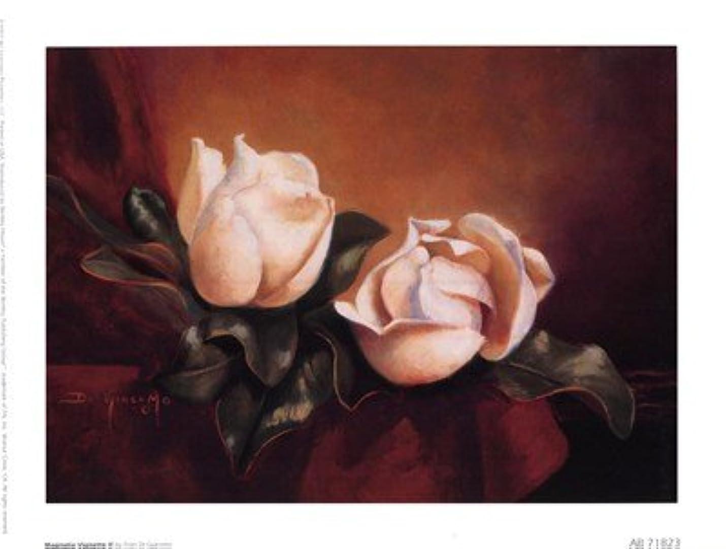 合併症の面では悪性Magnolia Vignette LL by Fran Di Giacomo – 8 x 6インチ – アートプリントポスター LE_49074