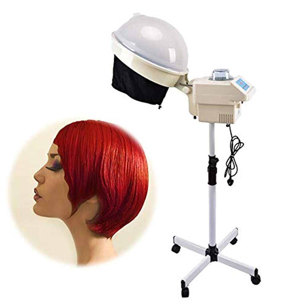 固体再生的蓄積するサロンドライヤー、髪染め機、霧は7つのレベルで調整できます、カラープロセッサプロ美容美容ツールベルトホイール黒帽子ヘアドライヤー