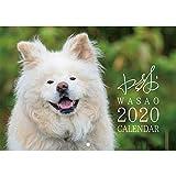 わさお 2020 ぶさかわ 人気犬 壁掛け カレンダー