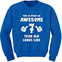 Tstars - This Is What an Awesome 7 Year Old Looks Like Youth Kids Sweatshirt