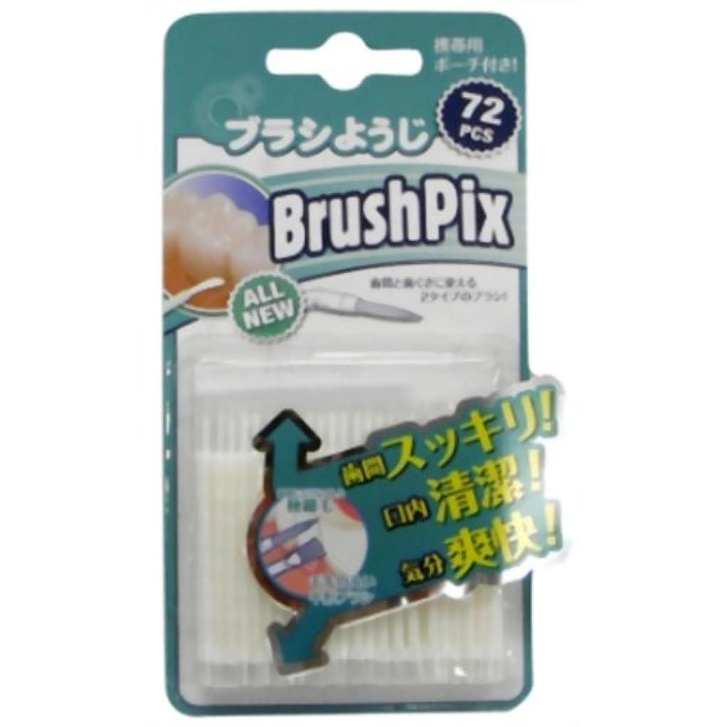 置くためにパックイーウェルパントリーPINO BrushPix BP-72 72本入