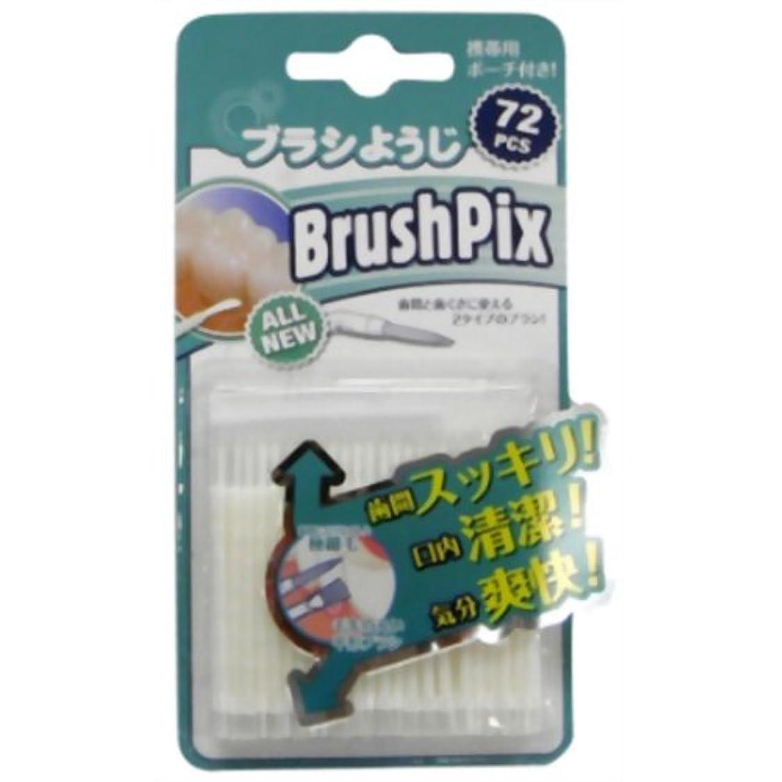 ラジカル荷物頼むPINO BrushPix BP-72 72本入
