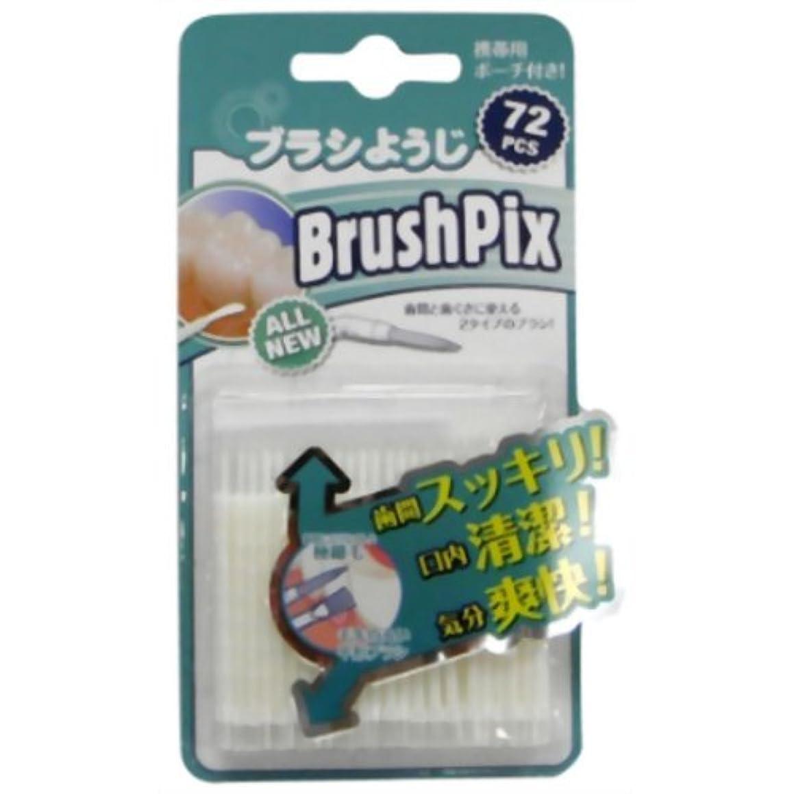名声時計回り剃るPINO BrushPix BP-72 72本入