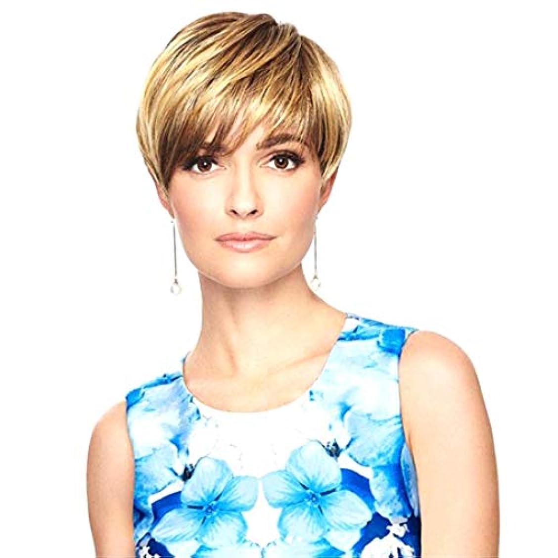 職人巨大もう一度Kerwinner 女性のためのかつらショートセクション斜め前髪ショートストレートヘア