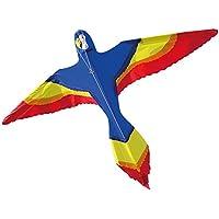Brookite Parrot Kite