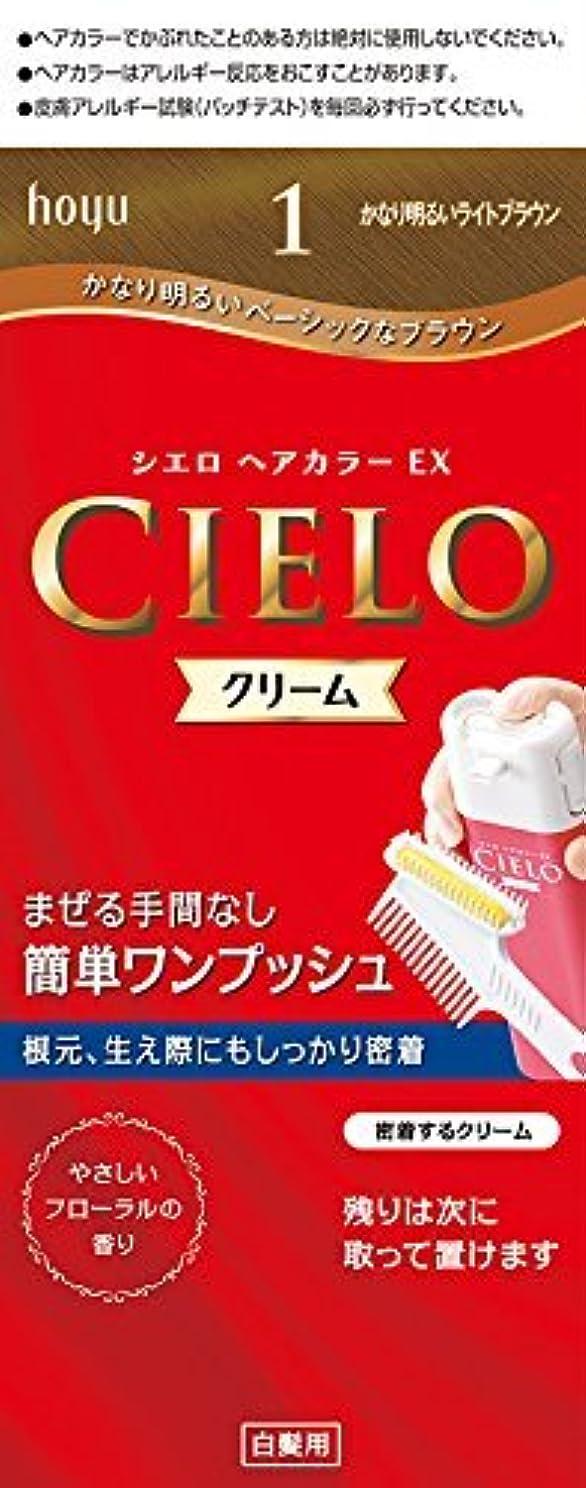 ハンバーガー運動する葉っぱホーユー シエロ ヘアカラーEX クリーム 1 (かなり明るいライトブラウン)×6個